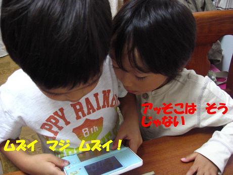 f0191259_984015.jpg