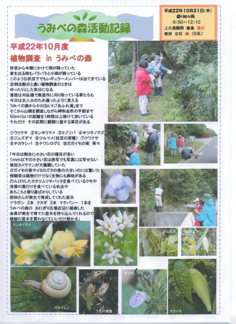 H22年10月度植物調査_c0108460_16211914.jpg