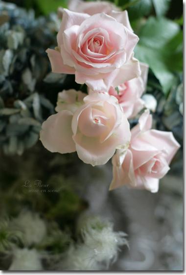 花市場は楽しいデス♪_f0127281_022015.jpg
