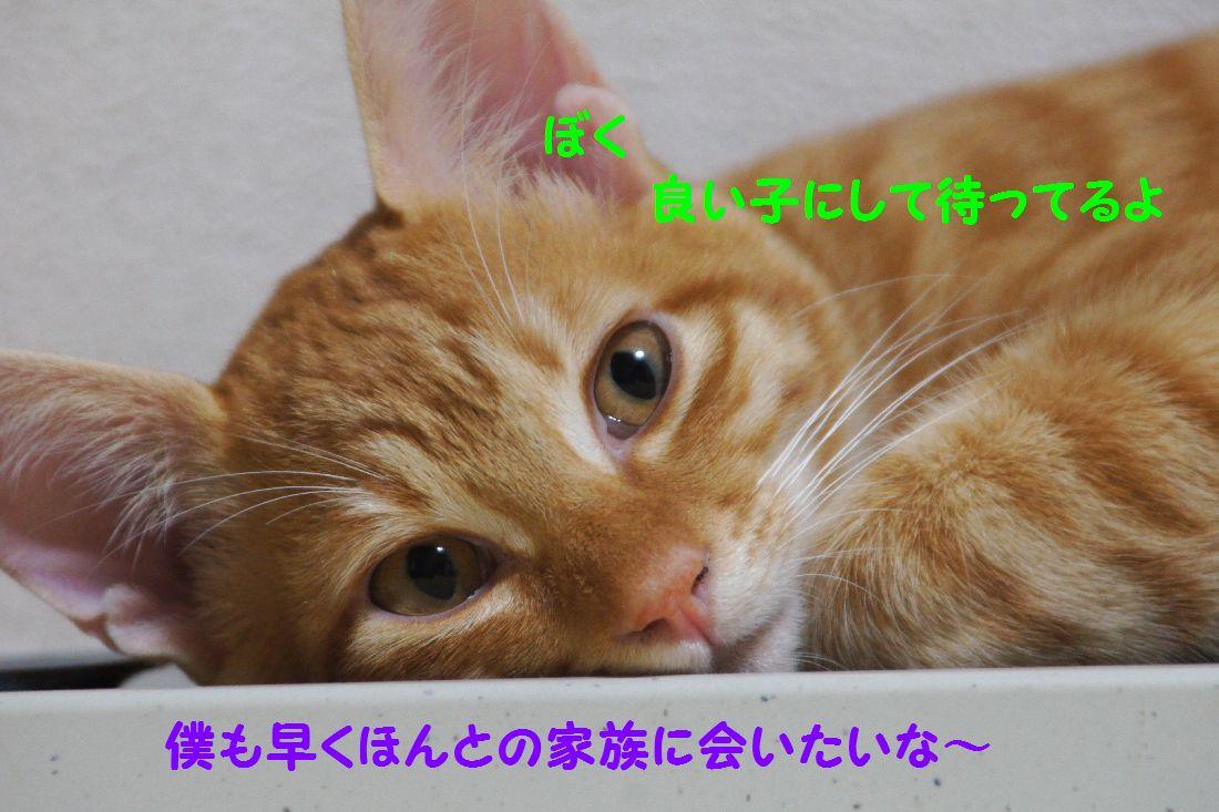 f0197682_22565847.jpg