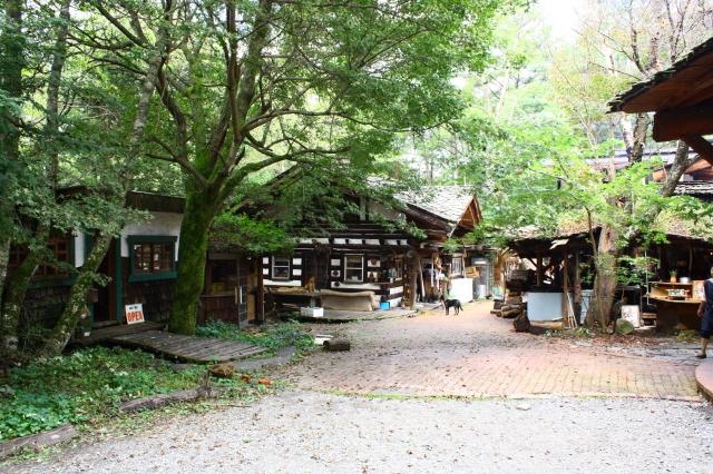 森の中の素敵なブライダル_c0188809_0421366.jpg