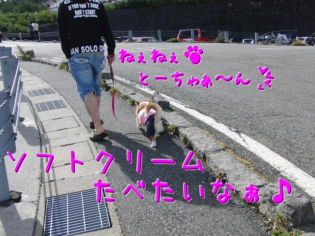 c0134720_1441182.jpg