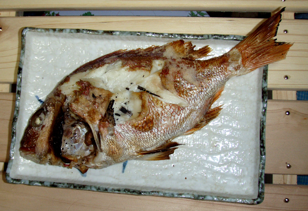 2010年10月21日(木) 知多半島 大井港より釣行_d0171823_2332636.jpg