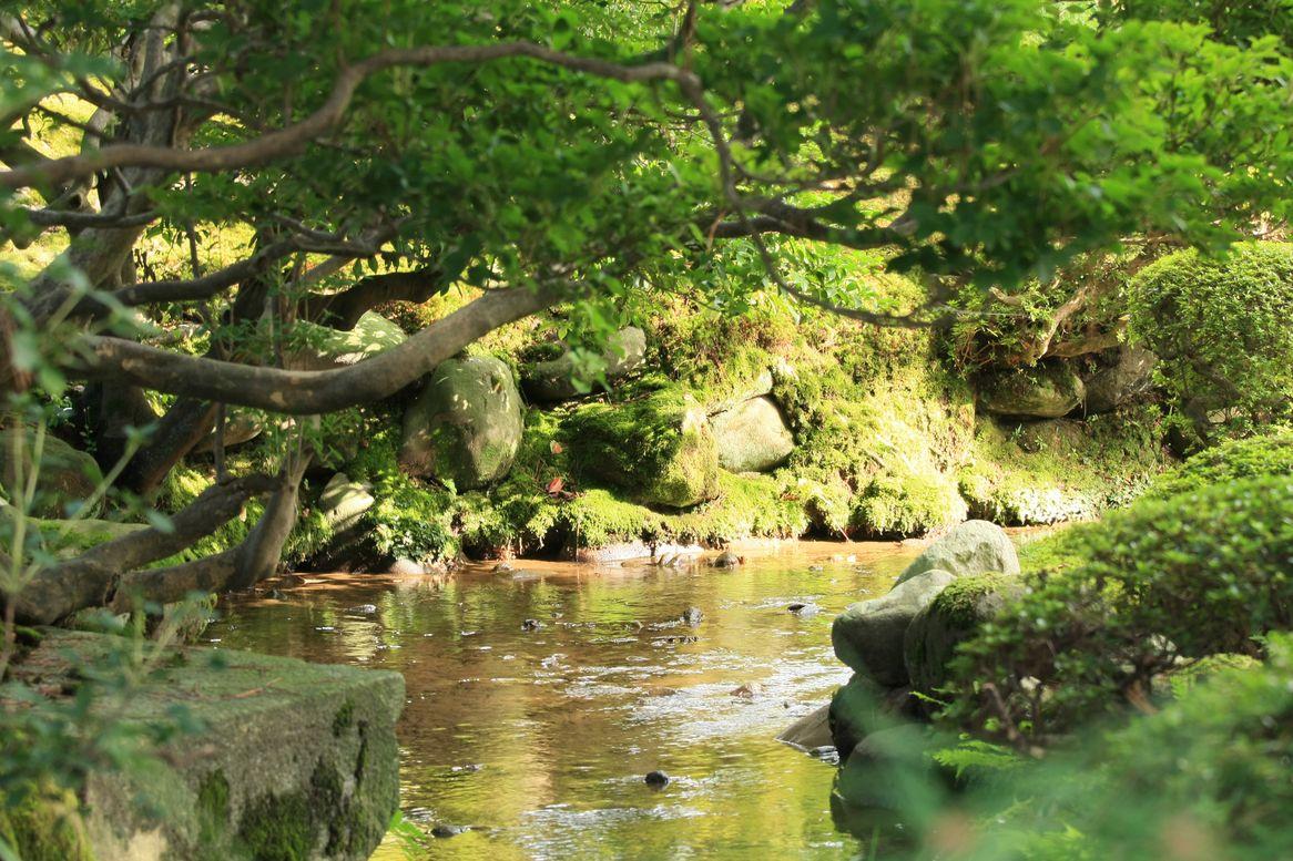 古都・金沢 2_d0152551_1964112.jpg