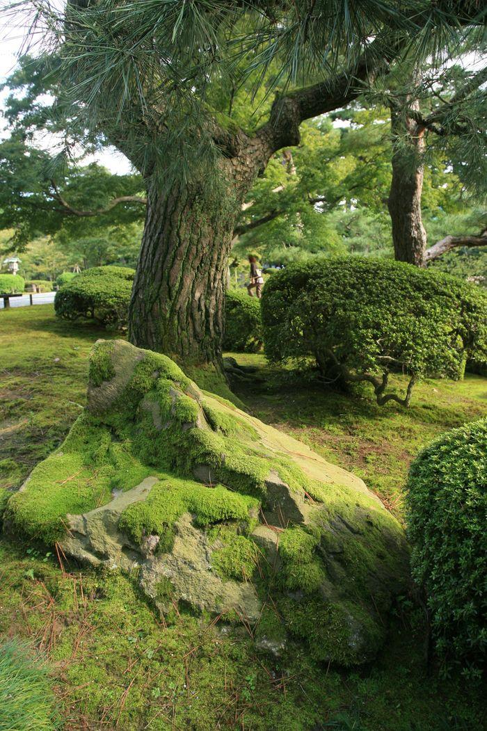 古都・金沢 2_d0152551_1975647.jpg