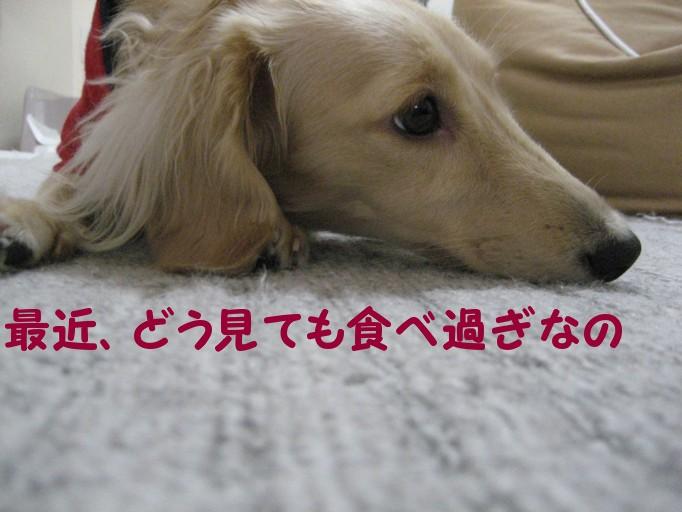 b0160052_19191162.jpg