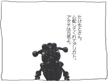 b0104065_1242049.jpg