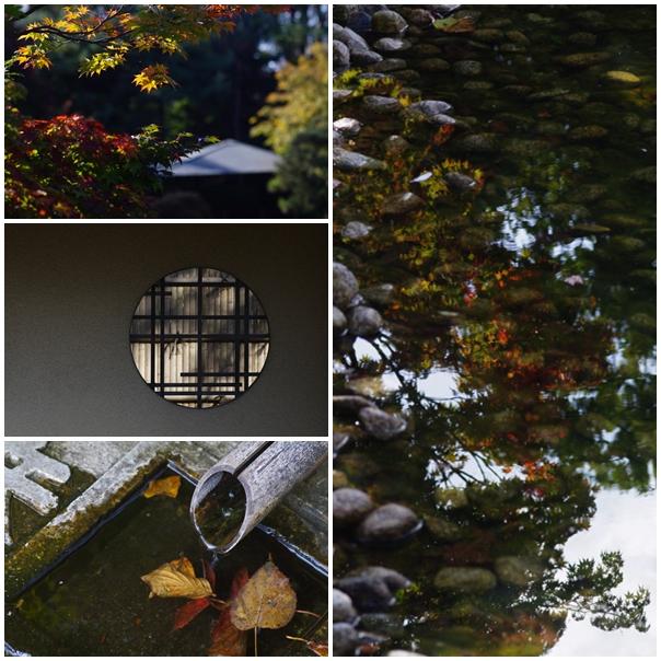 秋 和風_b0103798_5171169.jpg