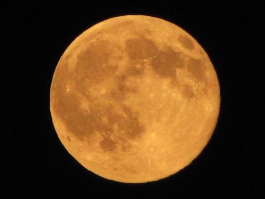 2010年10月23日(土):小春日和_e0062415_17334663.jpg
