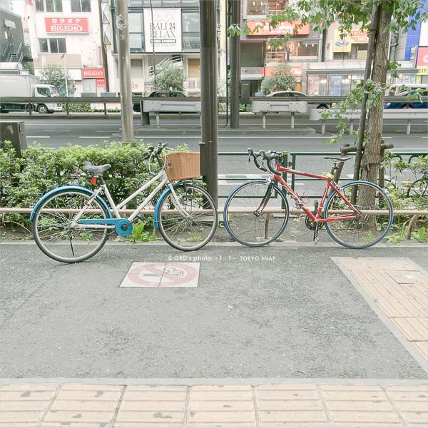 stand still_e0117517_21321616.jpg