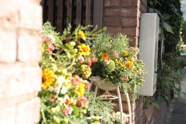 クランベリー色のドレスに 可愛い花で アンカシェット様へ _a0042928_22205313.jpg