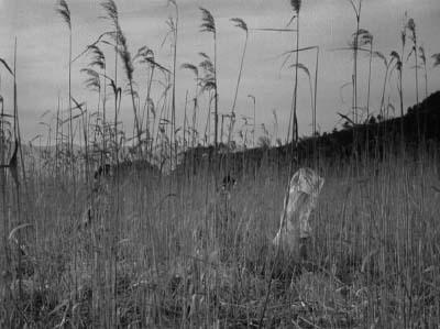 和風ハロウィーン怪談特集1 溝口健二監督『雨月物語』(大映、1953年) その2_f0147840_236972.jpg