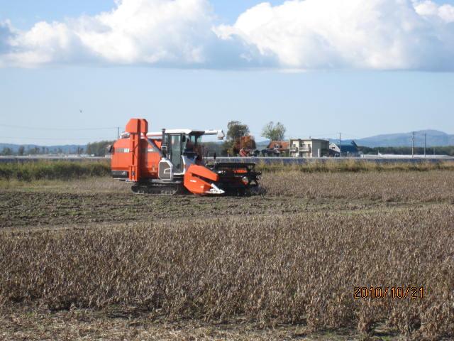 大豆収穫_f0231042_8442846.jpg