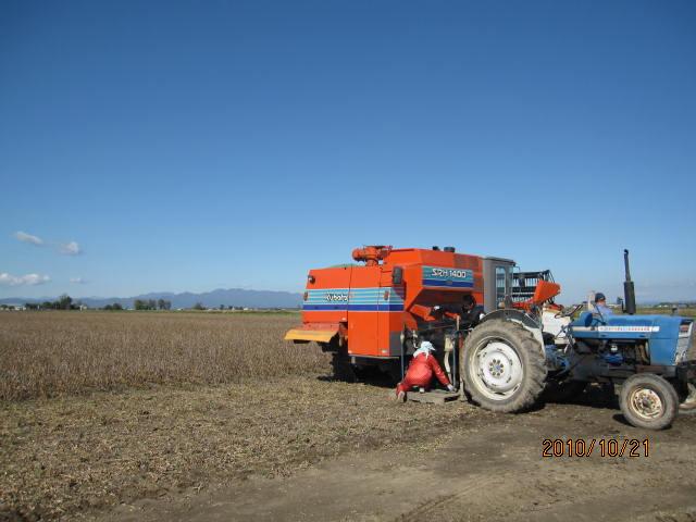 大豆収穫_f0231042_845822.jpg