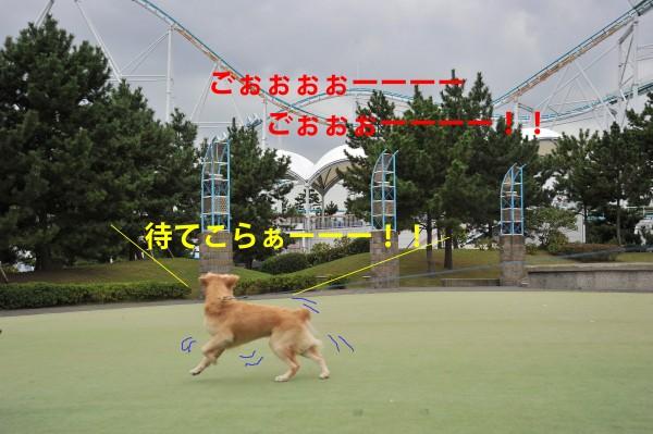 e0020166_1063962.jpg