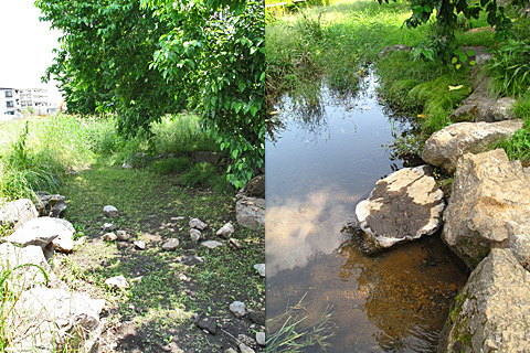 落合川を辿る(2)川を支える旧流路たち_c0163001_22541379.jpg