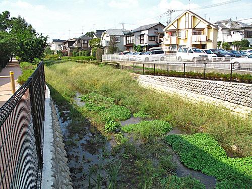 落合川を辿る(2)川を支える旧流路たち_c0163001_22541932.jpg
