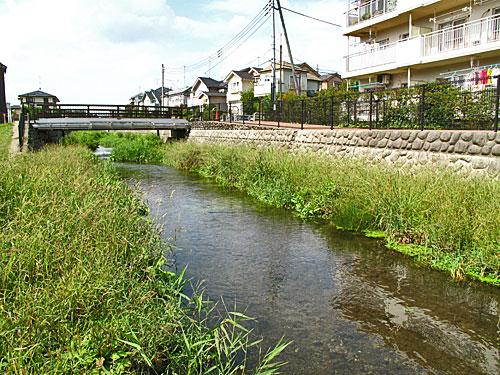 落合川を辿る(2)川を支える旧流路たち_c0163001_231038.jpg