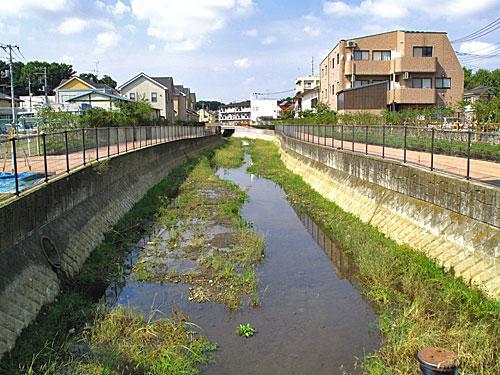 落合川を辿る(2)川を支える旧流路たち_c0163001_2371780.jpg