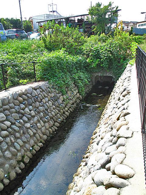 落合川を辿る(2)川を支える旧流路たち_c0163001_238781.jpg