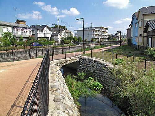 落合川を辿る(2)川を支える旧流路たち_c0163001_2395353.jpg