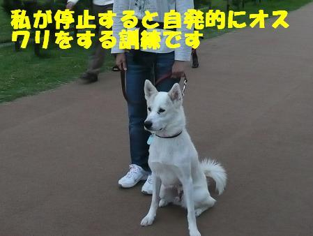 f0121712_22284736.jpg