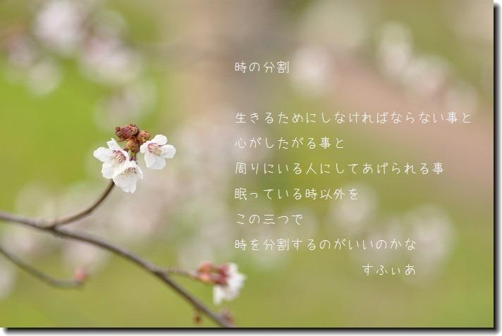 b0152416_2084345.jpg