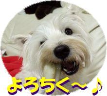 f0084422_230188.jpg