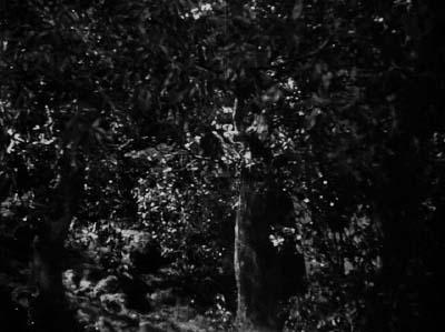和風ハロウィーン怪談特集1 溝口健二監督『雨月物語』(大映、1953年) その3_f0147840_22194166.jpg