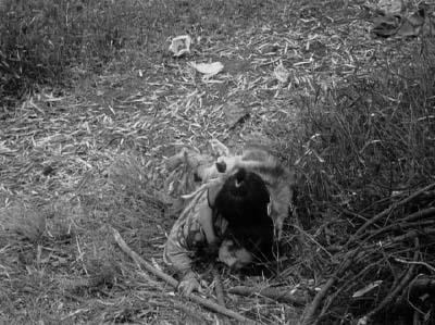 和風ハロウィーン怪談特集1 溝口健二監督『雨月物語』(大映、1953年) その3_f0147840_22413930.jpg