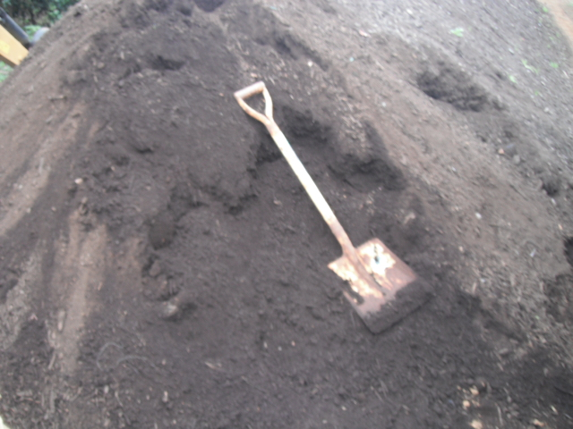 今日は堆肥の運び入れと草刈り・・葉物の収穫・・_c0222448_12445879.jpg