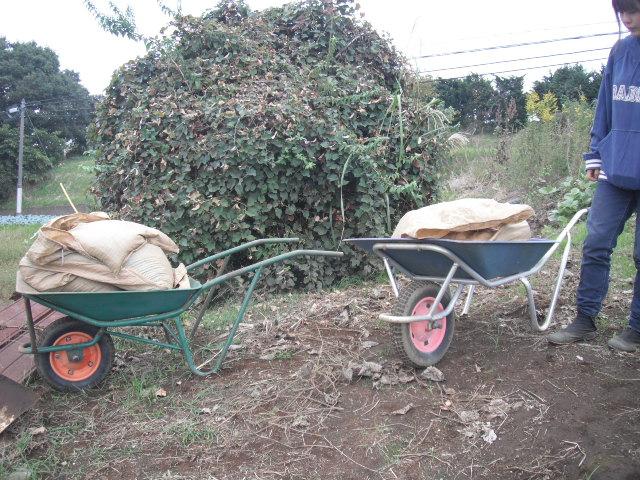 今日は堆肥の運び入れと草刈り・・葉物の収穫・・_c0222448_12452363.jpg