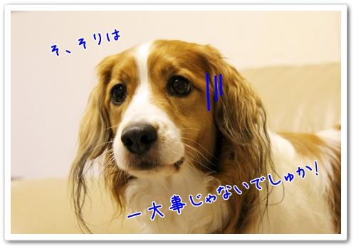 d0013149_2242168.jpg