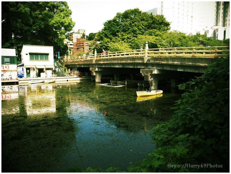 弁慶橋界隈 SILKYPIX テイストDCPイエロー_e0063851_9345550.jpg