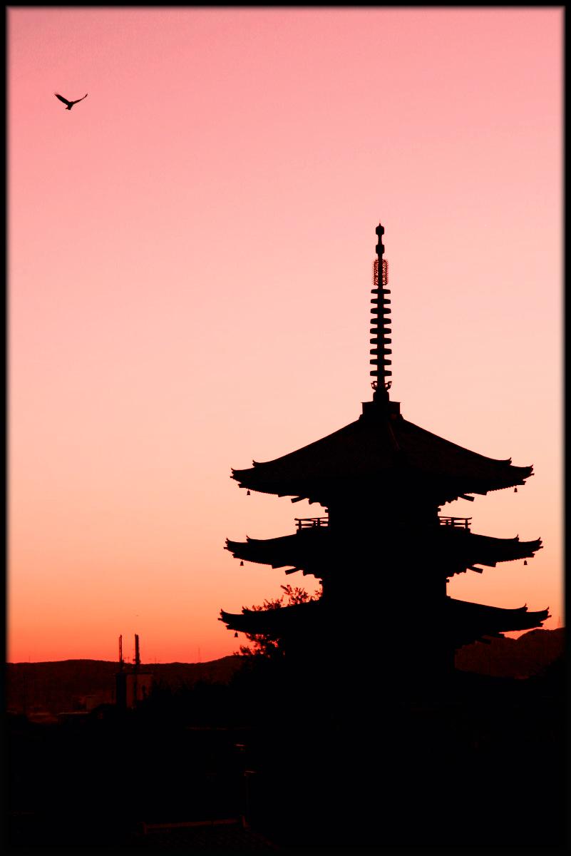 京都 de スナップ_f0021869_23472847.jpg