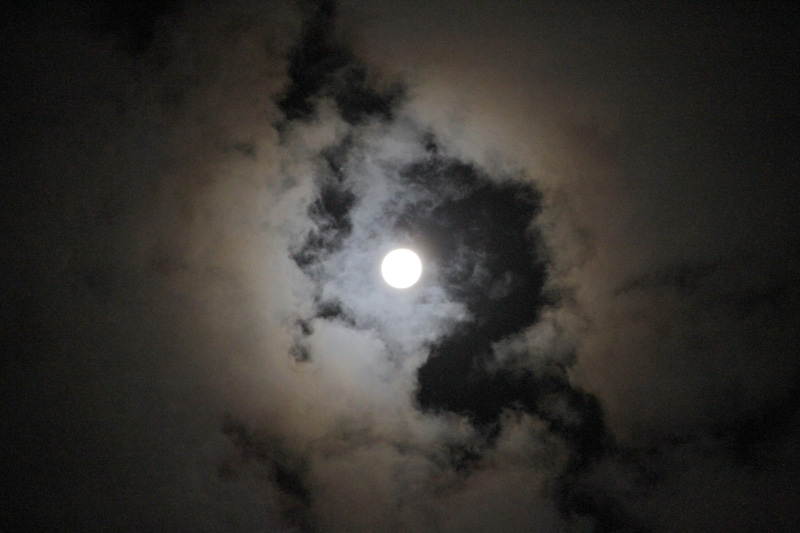 Moonlight Shadow_c0000587_226685.jpg