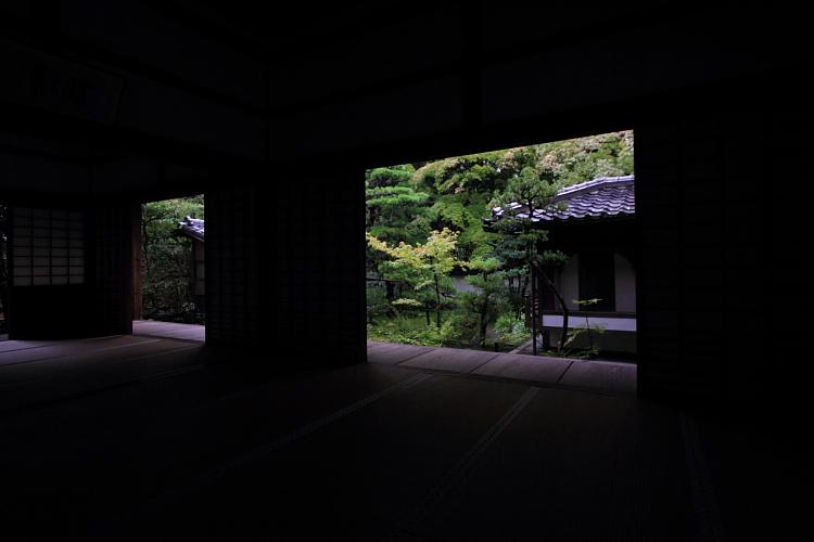 高桐院(大徳寺塔頭)_e0051888_5242048.jpg