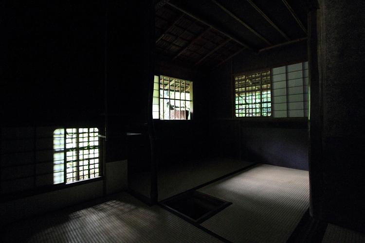 高桐院(大徳寺塔頭)_e0051888_525975.jpg