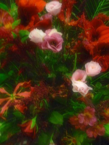 ア・ニュ 広尾  à nu, retrouvez-vous  ア・ニュ ルトゥルヴェ・ヴー ☆一周年☆Félicitations・゚✛_a0053662_1255232.jpg