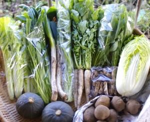 10月5週目 野菜セット不定期便のお知らせ_c0110869_9275980.jpg