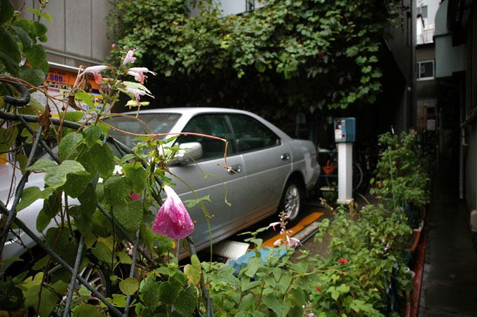 雨の人形町 壱丁目_e0082981_2345093.jpg
