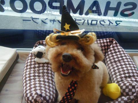 ★Happy Halloween★_b0186183_18265490.jpg