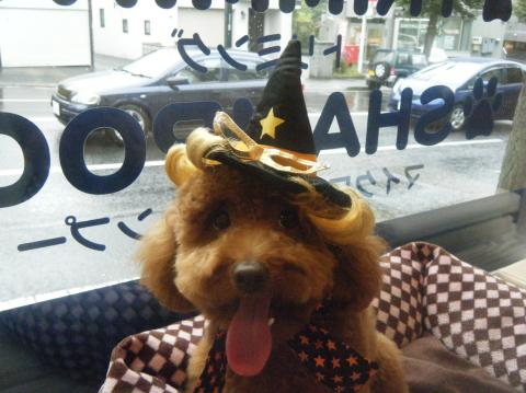 ★Happy Halloween★_b0186183_18282455.jpg