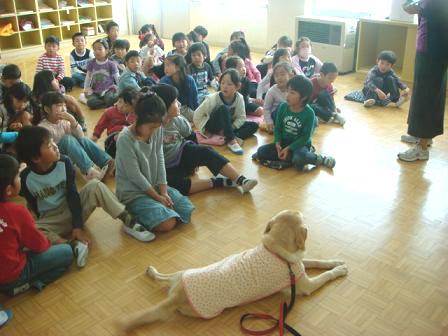 小学校で動物の話を_f0064906_17253349.jpg
