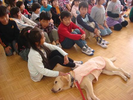 小学校で動物の話を_f0064906_17273726.jpg