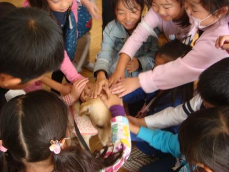 小学校で動物の話を_f0064906_17313441.jpg