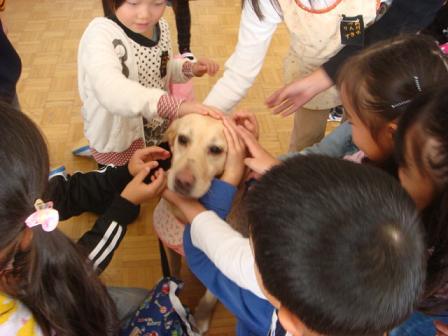 小学校で動物の話を_f0064906_17323594.jpg