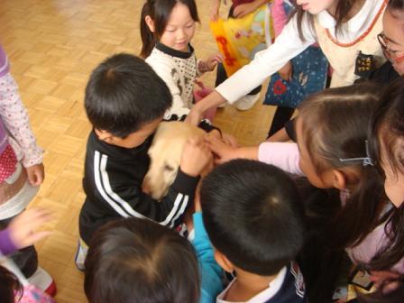 小学校で動物の話を_f0064906_17334817.jpg