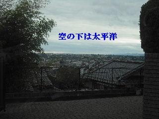 f0031037_1848417.jpg