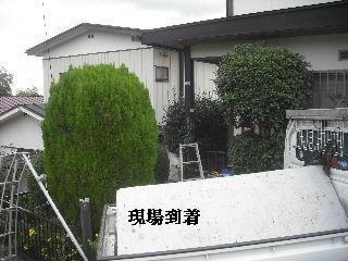 f0031037_184985.jpg